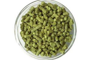 Хмель Nugget (Наггет) 10,1% 50г 3